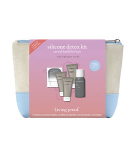 No Frizz Silicone Detox Kit