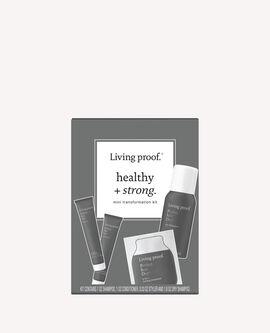 Perfect hair Day™ Starter Kit