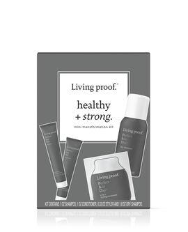 perfect-hair-day Starter Kit