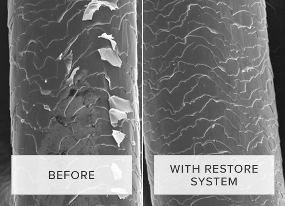 The science behind Restore